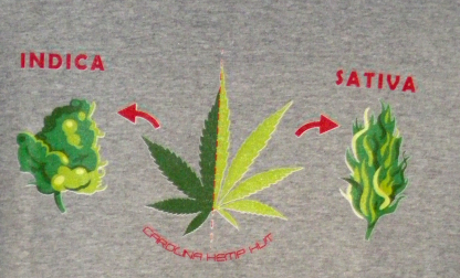 Hemp Hut - Apparel - T-shirt Indica Sativa